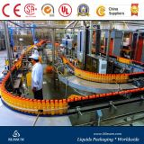 Machine automatique de fabrication de jus d'orange