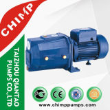 2017 3.0HP 4 Polegadas Deep Well Electric Water Pumps (4SKM)