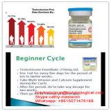 Geschlechts-Laufwerk-Förderung-Hormon-Testosteron Cypionate Steroid Puder-Testosteron Cypionate