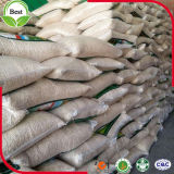 Gérmenes de calabaza blancos como la nieve de la nueva alta calidad de la cosecha