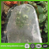 Sacs de plante de pomme de terre, anti compensation d'insecte d'agriculture