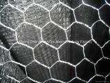 Новый Н тип шестиугольное изготовление Sha5874 машины сетки