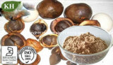 자연적인 제정성 동백나무 씨 추출 차 사포닌 60%-98%