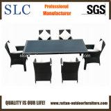 Mobília ao ar livre Guangdong (SC-B8849)