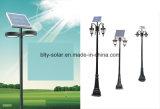 Lâmpada solar solar do jardim da luz de rua