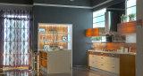 Klassische europäische Art-Küche-Möbel (ZX-051)