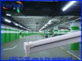 LED T8, T8 LED, tubo del LED T8, LED T8 Tube, tubo del LED T8 lampada