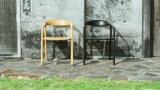 Aschen-Holz, das Stuhl-modernen speisenden Stuhl-Computer-Stuhl (M-X2021, speist)