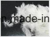 4-6 помытое Cm белое перо утки (IDFL, USA-2000, EN12934, JIS, GB/T17685-2016)