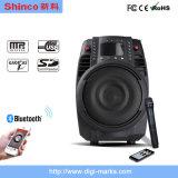 Heißer Zoll Bluetooth Berufs-DJ des Verkaufs-Doppelt-12 positionieren Lautsprecher