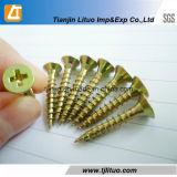 C1022A Material Amarelo Zinc Plated Screw Screw