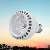 Osram Chip LED Innen-NENNWERT Licht (YM-PAR30-COB)