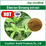 Het Siberische Poeder van het Uittreksel van Ginsengen met ISO- Certificaat
