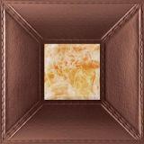 Painel de parede novo do projeto 3D para a parede & o teto Decoration-1152