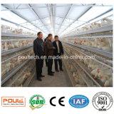 Rebanhos animais da gaiola da exploração avícola que levantam gaiolas com a máquina do moinho da pelota da alimentação