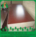 Higtの品質の最もよい価格のメラミンによって直面されるブロックのボード