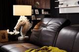 놓이는 새로운 현대 가정 가구 거실 가죽 소파 (HC8116)