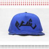 Nuevo sombrero de los casquillos del Snapback con diseño de DIY