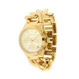 De gouden IonenMachine van het Plateren voor Horlogebandje, Horlogekast, de band van het Horloge