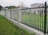 حديقة سياج [أنتي-كليمبينغ] فولاذ سياج