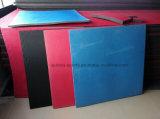 sports 2.5cmtaekwondo formant le couvre-tapis de forme physique de danse de couvre-tapis de Taekwondo