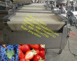 Automatische Blaubeere-sortierende Maschinen-Erdbeere, die Gewichtung-Verpackungsfließband sortiert