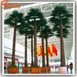 Artificielle en pot Fan Toutes sortes de feuilles de palmier Plastic Trees