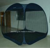 Im Freien Zelt aufstellen des Zeltes - oben schnell knallen