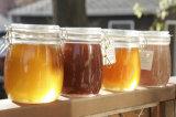 De lege Hexagon Kruik van de Honing van het Glas met het Deksel van het Metaal