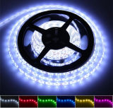 Luz flexible de la cuerda de la luz de tira del color LED de RGB/White LED con 60*SMD5050/2835