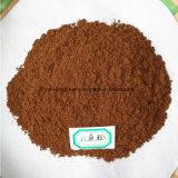 De Chinese Anijsplant van de Ster, Illicium Verum