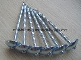 Гальванизированная сталь Q195 настилающ крышу ногти от фабрики