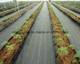 雑草防除のための編まれた地被植物ファブリック