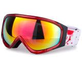 O esqui polarizado PC exalado permutável ostenta óculos de proteção