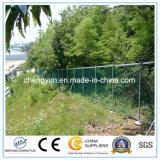 Valla de alta calidad Malla de alambre soldado jardín en venta