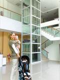 Elevador qualificado da HOME do passageiro com parede de vidro