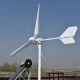 2000W turbina de vento máxima da potência 3000W com 3 lâminas