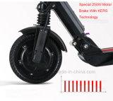 Scooter électrique portatif bon marché de batterie au lithium 11kg (ES-01)