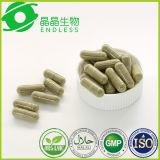La pillola eccellente di dieta del Suppressant di appetito pulisce la capsula della polvere della Moringa del Detox
