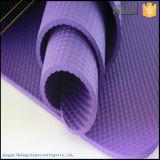 Mat van de Yoga van de Yoga Mat/NBR van de Reis van de Verzekering van de handel de Comfortabele