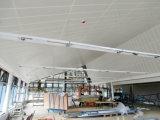 Plafond 2017 en aluminium étanche à l'humidité de fournisseurs de Topsale Chine