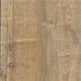 Le mattonelle di pavimento di lusso antibatteriche del PVC di alta qualità gradicono il legno