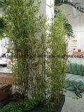 Plantas de bambú artificial uso al aire libre