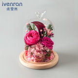 Flor natural del 100% Rose para el regalo de cumpleaños de la tarjeta del día de San Valentín