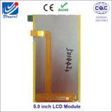 De Vertoning van 4.95 Duim TFT LCD met (RGB) X854 Resolutie 480