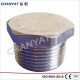 Spine filettate resistenti alla corrosione dell'accessorio per tubi (B626 Uns N10276 Hastelloy C276)