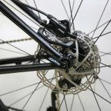 """يسرع [ديور] 10 26 """" [كر-مولي] ثلج درّاجة /Fat إطار العجلة درّاجة ([فت2])"""