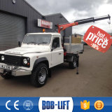 熱い販売800のKgの小さい電気小型トラッククレーン(SQ08A4)