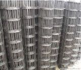 Rete metallica saldata di rinforzo concreta di alta qualità da Maorong