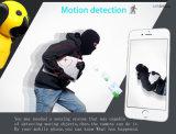 Heiße verkaufende intelligentes Ausgangs-IPminiWiFi CCTV-Monitor-Kamera mit inländischem Wertpapier